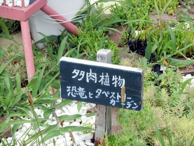 りんくう公園16.jpg