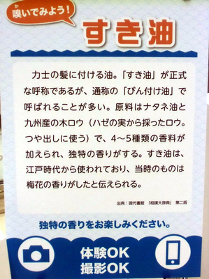 NHK名古屋場所13.jpg