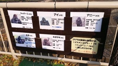 higashiyama-23.jpg