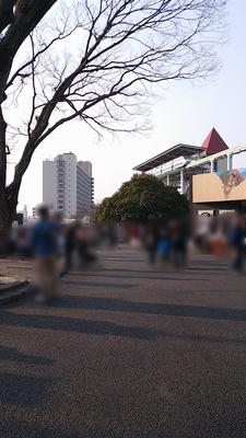 higashiyama-9.jpg